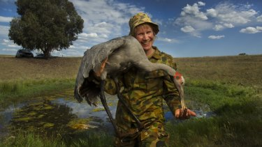 Decked out in camouflage gear, Inka Veltheim holds one of the taxidermied brolgas.