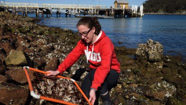 Biological scientist Dr Melanie Bishop aims to restore oyster reefs to Sydney Harbour.