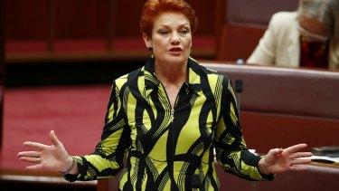 Senator Pauline Hanson in the Senate on Thursday.