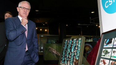 Prime Minister Malcolm Turnbull on Monday announced a suite of new tax incentives as part of its National Innovation and Science Agenda (NISA).