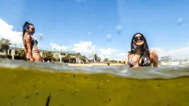 Despite an EPA warning of poor water quality,  people were still swimming at St Kilda beach on Wednesday.