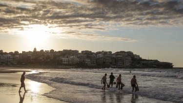 Dean Norburn said he was surfing at the southern end of Bondi Beach when a smal shark landed on his board.