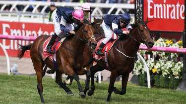 Williams quinella: Rekindling (pink cap) crosses the line ahead of Johannes Vermeer to win the Melbourne Cup.
