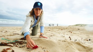 Denise Hardesty, a CSIRO scientist, collects plastic pollution on a beach.