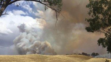 Plumes of smoke rise near Wodonga.