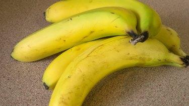 A new strain of Panama disease threatens banana crops.