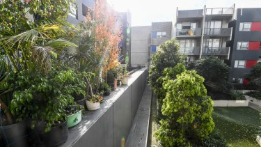 The wall separating the public housing (left) from private apartments and their exclusive garden at the Carlton development.