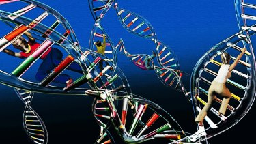 Genetic research may unlock new medical treatments. <i>Illustration: Harry Afentoglou</i>