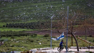 A boy plays near settlement vineyards in the Israeli-occupied West Bank. Human Rights Watch found Palestinian children working in hazardous conditions for low wages on settlement farms.
