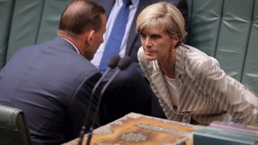 When Julie Bishop put the case to the cabinet, no one raised any objection.
