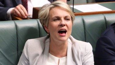 Tanya Plibersek says Labor should change its platform on same-sex marriage at its national conference in July.