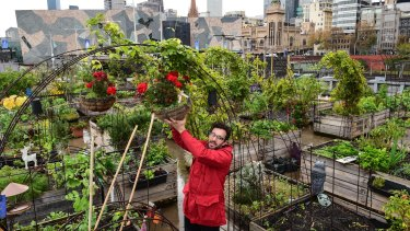 Mat Pember, director of Pop Up Patch, a community garden behind Federation Square  faced with closure.
