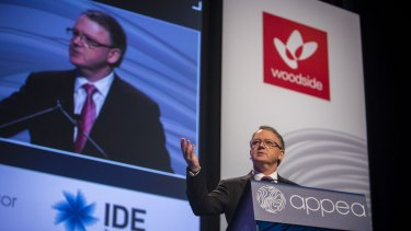 Woodside CEO Peter Coleman says the gas industry is partly to blame for its own woes.