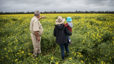 Neil Mattiske with his daughter Joanne and grandson Riley look out to their canola field