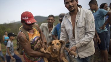 People carry an injured dog they rescued in the small town of Bento Rodrigues, which flooded after a dam burst in Minas Gerais state, Brazil.