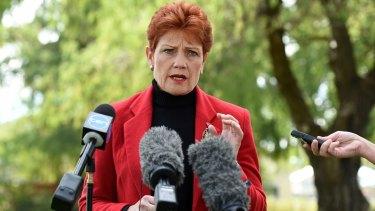 One Nation's comeback kid Pauline Hanson.