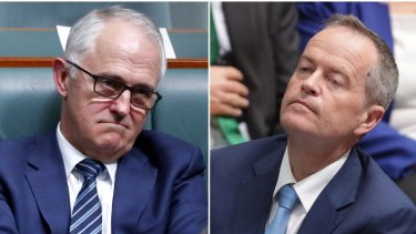 """The letter warns Australia's reputation on human rights is deteriorating under the """"failure"""" of both Malcolm Turnbull's government and Bill Shorten's opposition."""