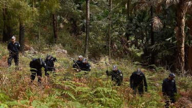 Police conduct a line search in the Royal National Park for the remains of Matthew Leveson.