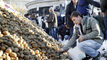 Helping himself: A man picks up potatoes from a pile dumped by farmers in Paris.