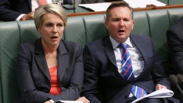 Deputy Opposition Leader Tanya Plibersek and shadow treasurer Chris Bowen listen to Mr Abbott during question time.