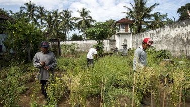 The IDEP Foundation sells produce from the prison garden to restaurants including Ubud Deli, Bali Buda, Pizza Bagus and Alchemy.
