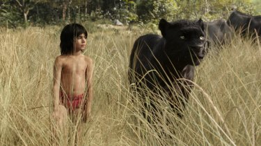 Mowgli (Neel Sethi) and Bagheera (voice of Ben Kingsley) in Jon Favreau's live action version of <i>The Jungle Book</i>.