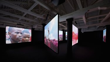 Richard Mosse's video installation The Enclave captures the DRC using military infra-red film.