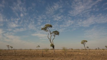 The Fraser Coast region had the lowest rainfall in its recorded history over the past 12 months, with farmers struggling to cope with the drought which grips nearly 90 per cent of Queensland.
