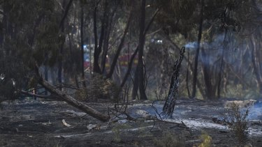 Burnt out land in Carrum Downs on Saturday.