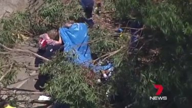 Teachers and emergency workers attend to a student hit by a tree branch at Heathcote High School.