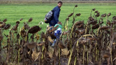 A man walks with a child through a field behind the border line between Serbia and Hungary in Roszke, southern Hungary in Roszke. Migrants are heading through Croatia to get to Western Europe.