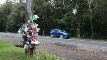 The telegraph pole where the car carrying five friends crashed, killing Jackson Williams, 17.