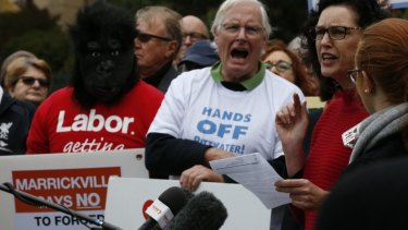 Some of the protesters at the Save our Councils rally at NSW Parliament House on Thursday.