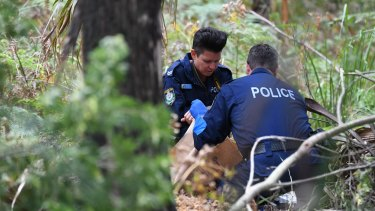 Police gathering evidence at the scene on Friday