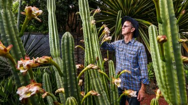 Dr Brett Summerell, director of science and conservation at the Royal Botanic Gardens in Sydney, with a cactus still in full bloom due to the unusual run of warm weather in Sydney.