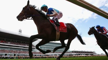 Agony and ecstasy: Admire Rakti barrels down the back straight on his doomed Melbourne Cup run.