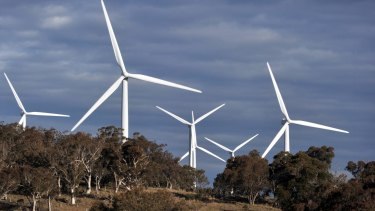 Wind turbines stand behind trees at the Capital Wind Farm, operated by Infigen Energy, in Bungendore, New South Wales,