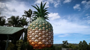 The big pineapple on Queensland's Sunshine Coast.