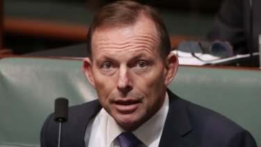 """Tony Abbott says the Greens have 364 other days a year to be """"politically correct""""."""