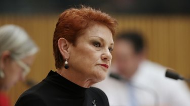 Pauline Hanson took on ASIO boss Duncan Lewis over links between refugees and terrorism.