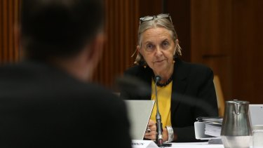 Lee Rhiannon is in open conflict with former party leader Bob Brown