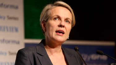 Labor's Tanya Plibersek did not help the cause or her own credibility.