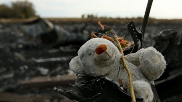A teddy bear among the debris of flight MH17 at the crash site outside the Ukrainian village of Grabovka in 2014.