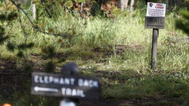Elephant Back Loop Trailhead in Yellowstone National Park, Wyoming, is temporarily closed after the death of a hiker.