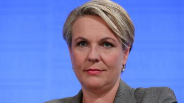 Tanya Plibersek has accused the Coalition of gutting Australia's aid program.