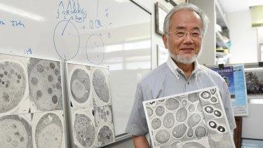 Nobel prize winner: Japanese scientist Yoshinori Ohsumi at the Tokyo Institute of Technology.