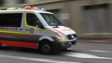 A seven-year-old boy is in hospital after a dog mauled him in Sydney's south-west on Saturday.