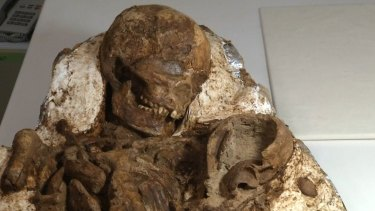 The 4800-year-old fossil of a mother and baby found in Taiwan.