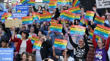 Hundreds of doctors and medical students rally in Sydney to support marriage equality earlier this month.