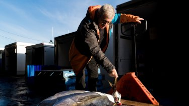 Canberra-based John Fragopoulos loads fish on to his truck during his twice-weekly buying commute to the Sydney Fish Market.